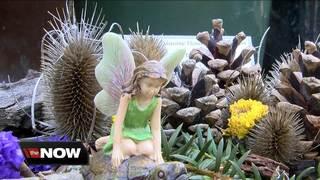 Fairy Festival returns to the Botanical Gardens