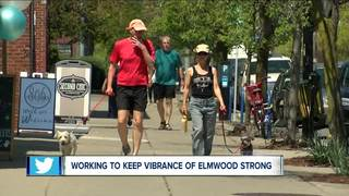 Working to keep Elmwood vibrant and strong