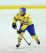 Sabres sign Swedish defenseman Lawrence Puilut