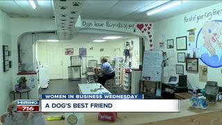 Dog whisperer's secret to success