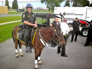 Sheriffs mourn the loss of beloved horse