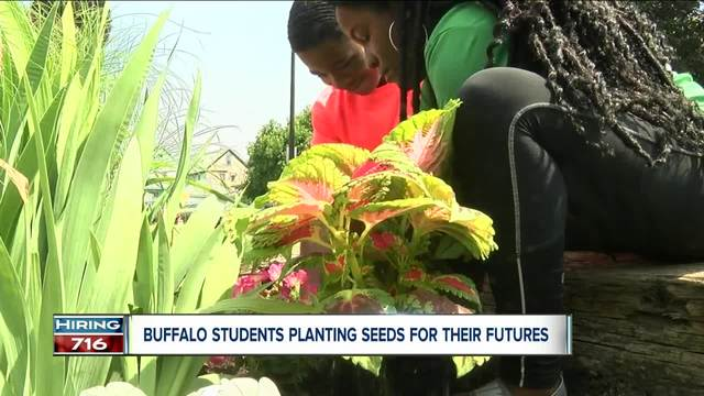 Youth Planting Seeds For Their Future On Buffalo S