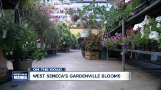 On the Road: West Seneca's Gardenville Blooms