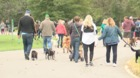 25th annual Paws in the Park a