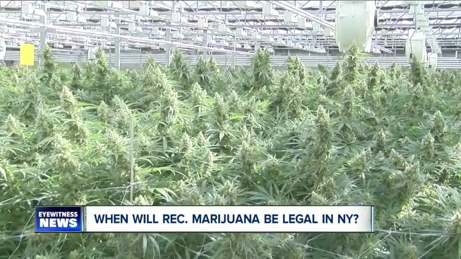 when will marijuana be legal in new york  how will it be